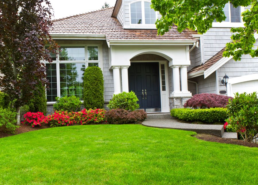 Landscaping in Colorado Springs